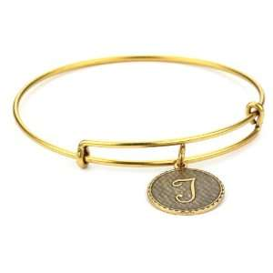 Alex and Ani Bangle Bracelet Bar T Russian Gold Plated