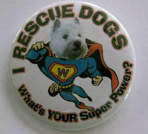 WESTIE superhero dog RESCUE BUTTON badge shelter pet