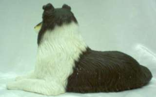 Collie Tri Color Dog Lassie AKC Rough Coated dog