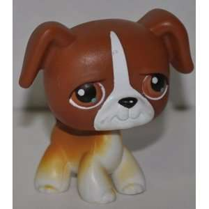 Boxer #40 Dog (Brown, White Accents, Brown Eyes) 2004 Littlest Pet