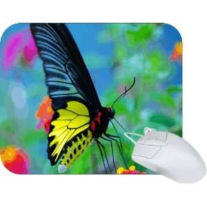 Rikki Knight MultiColor Butterfly Mouse Pad Mousepad