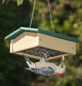 Recycled Plastic Upside Down Suet Wild Bird Feeder Eco 601635601053