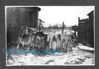 1920s Hunting Photo Animal Furs Stretching Farm Photo beaver pelts