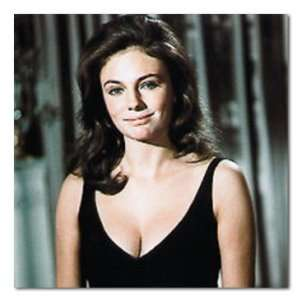 Jacqueline Bisset Color Box Canvas Print Gallery Wrapped