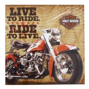 Lets Party By Hallmark Harley Davidson Lunch Napkins
