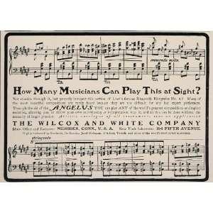 1901 Vintage Ad Angelus Player Piano Music Score Liszt