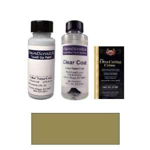 2 Oz. Sandrift Gray Metallic Paint Bottle Kit for 2006