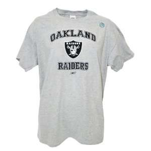 NFL Oakland Raiders Short Sleeve T Shirt, Large Sports
