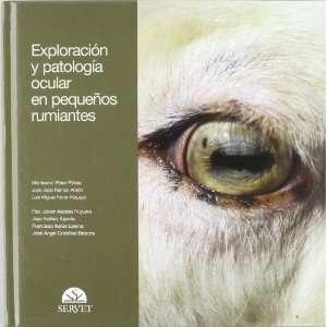 Perez Pinero, Juan Jose Ramos Anton, Luis Miguel Ferrer Mayayo Books