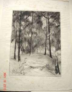 Orig BLOCK Engraving C. W. Anderson Madelines Grove NH