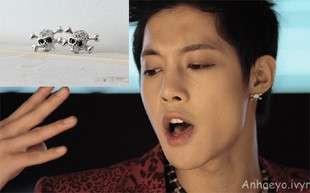 Korean SS501 Kim Hyun Joong Cubic Skull Earring DE17
