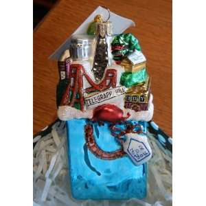 San Francisco In a Bag Christmas Ornament By Artist